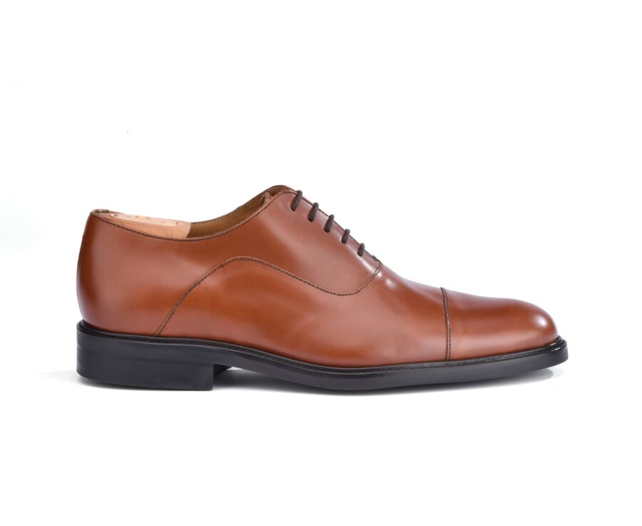 Brackley Gomme city Chestnut